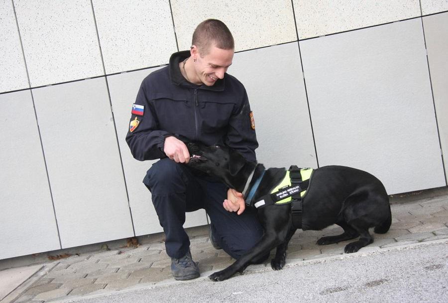 Vodnik Matej in psička Tana