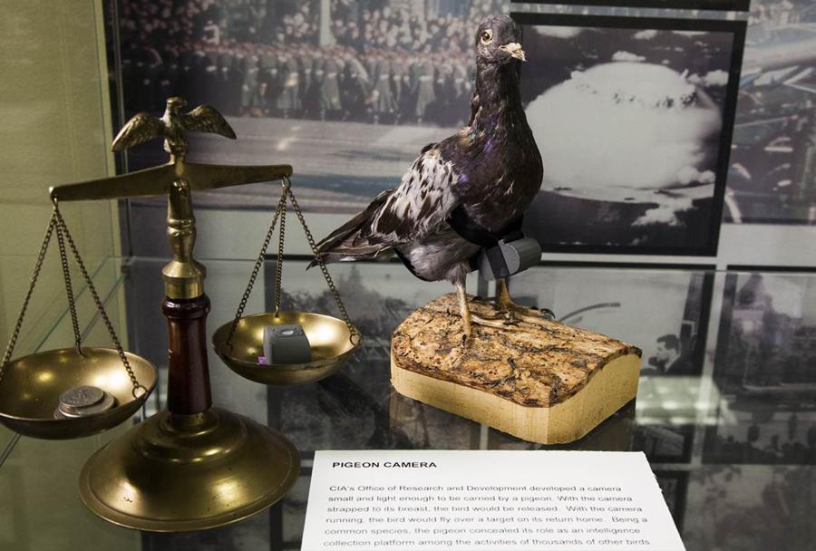 Muzej CIA:  kamera na golobu