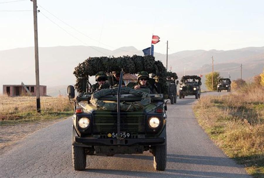 Litovska vojska