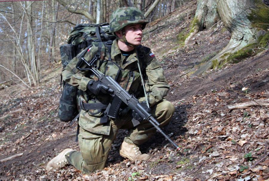 Poljska puška WZ beryl 96