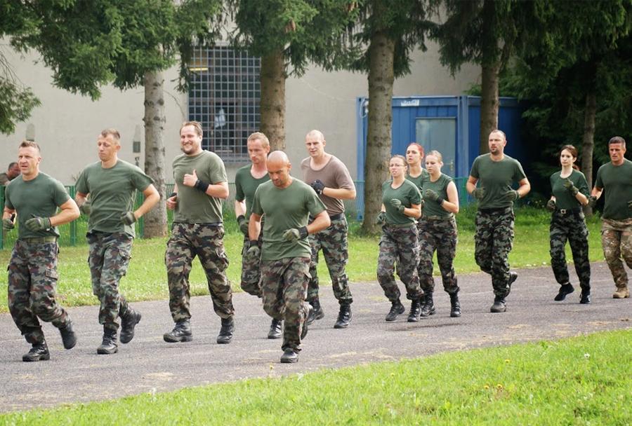 Slovenska vojska - naborništvo