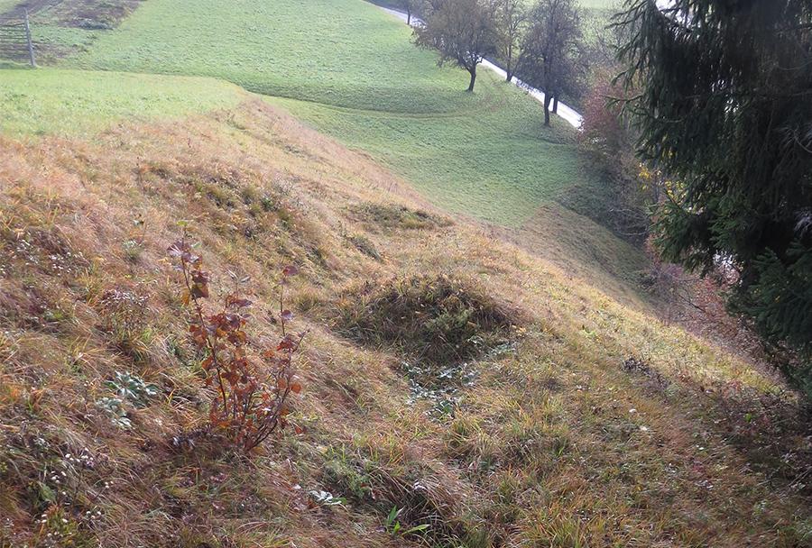 Primer jarka Savske linije na travniku (v ospredju) nad cesto v Dovje