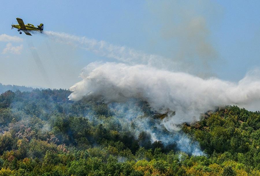 Izraelsko policijsko letalo Air Tractor AT-802 4X-AFA med gašenjem v Makedoniji (foto Igor Bozinovski)
